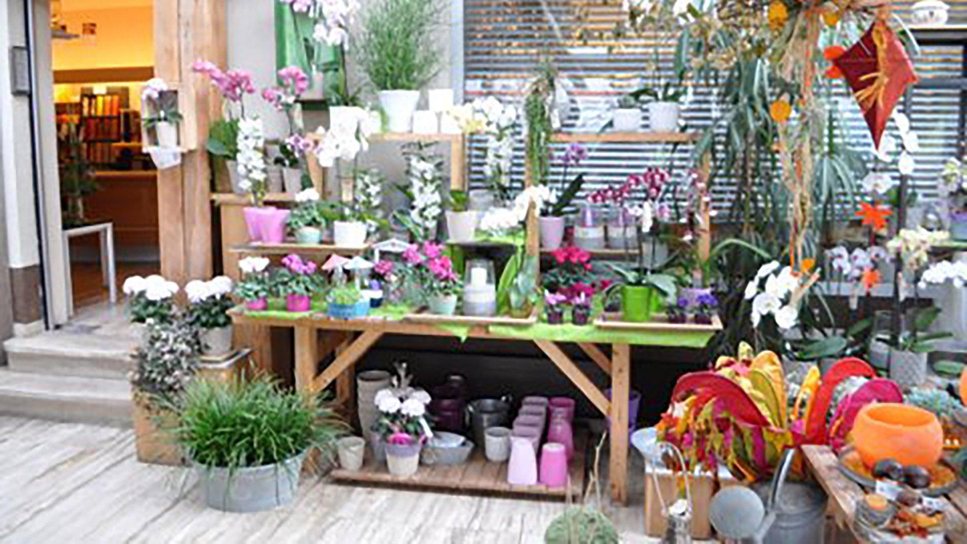 Blumen Gerstenlauer