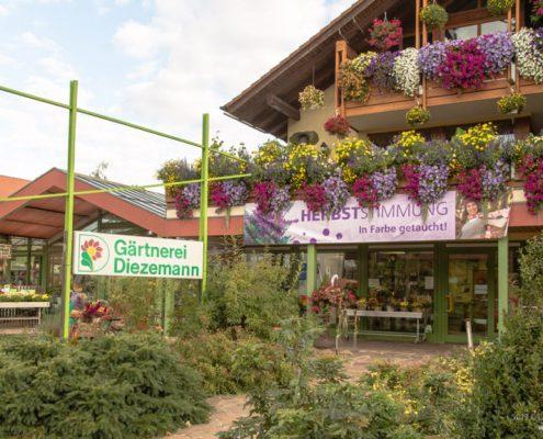 Gärtnerei Diezemann Fürth Burgfarrnbach