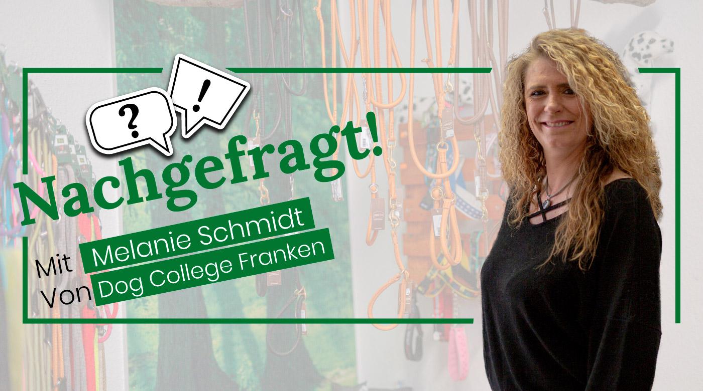 Nachgefragt-mit-Melanie-Schmidt-von-Dog-College-Franken