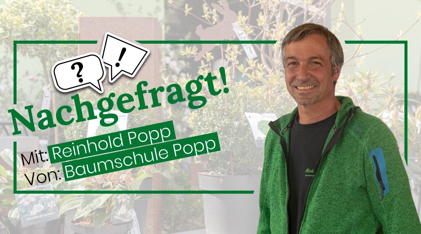Nachgefragt-mit-Reinhold-Popp-von-Baumschule-Popp